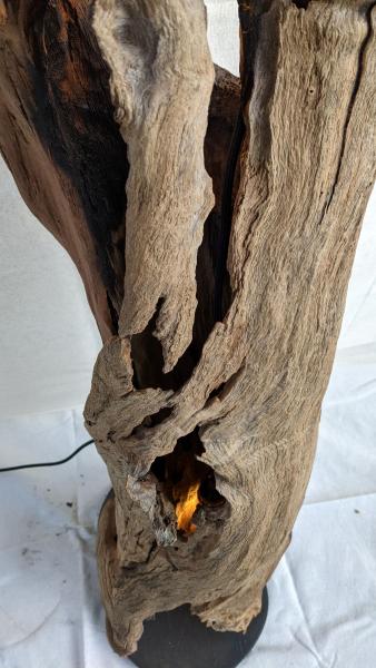 Hollow-Trunk-Lamp-2